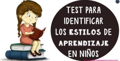 Test de estilos de aprendizaje